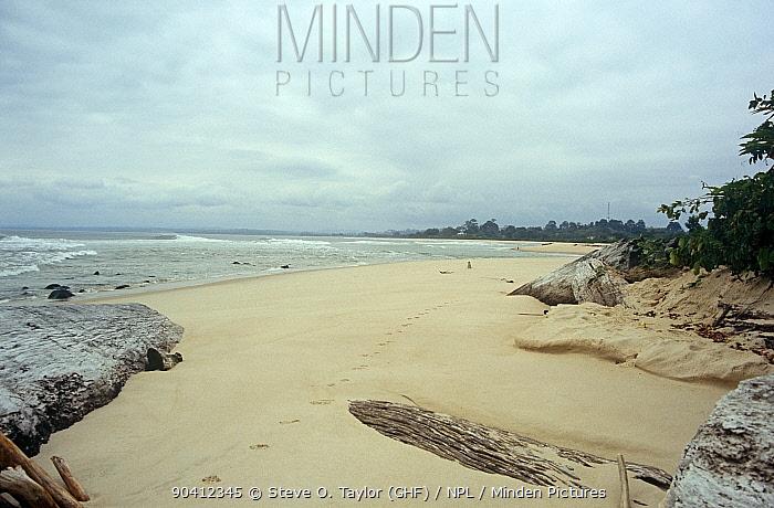 Myumba beach landscape, southern Gabon, 2008  -  Steve O. Taylor/ npl