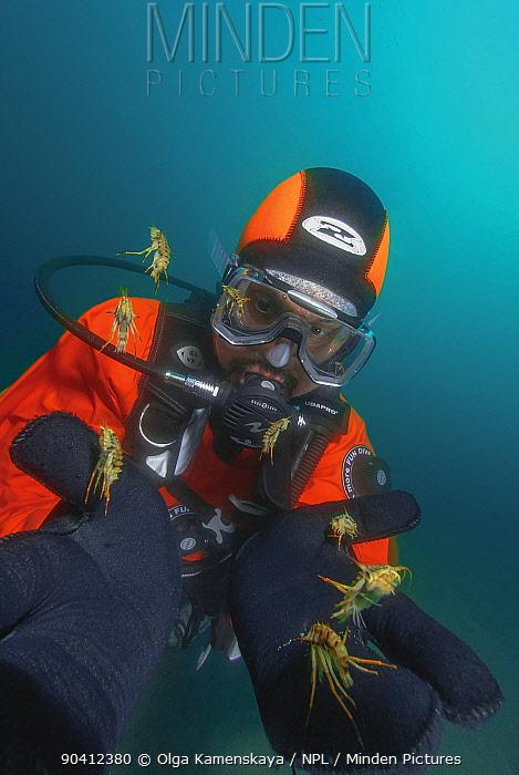 Diver with Amphipods (Acanthogammarus lappaceus) Lake Baikal, Russia, August 2008  -  Olga Kamenskaya/ npl