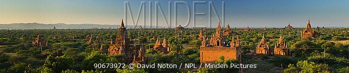 Panoramic landscape of the temples of Bagan, Myamar, November 2012  -  David Noton/ npl