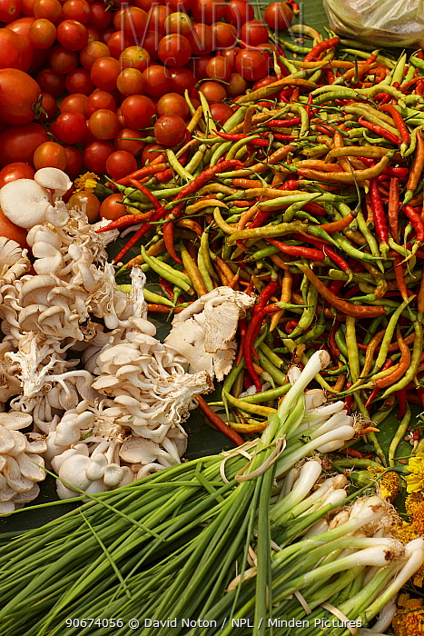Fruits and vegetables for sale in market in Luang Prabang, Laos, March 2009  -  David Noton/ npl