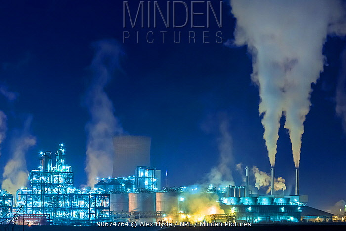 Saltend Chemical Plant at night, Kingston upon Hull, East Yorkshire, England, UK January 2014,  -  Alex Hyde/ npl