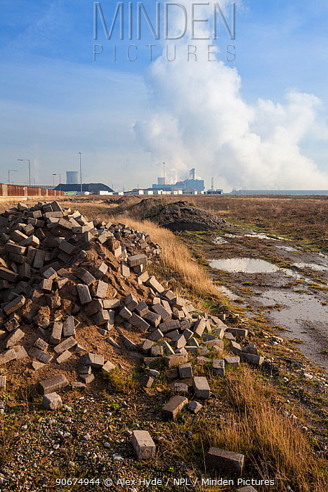 Brownfield site with chemical site in the background, Kingston upon Hull, East Yorkshire, England, UK, January 2014  -  Alex Hyde/ npl