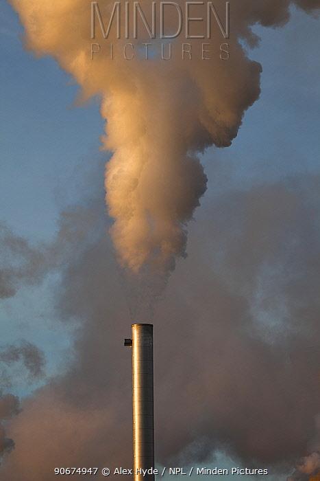 Chimneys at Saltend Chemical Plant, Kingston upon Hull, East Yorkshire, England, UK, January 2014  -  Alex Hyde/ npl