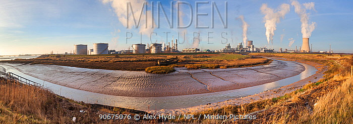 Saltend Chemical Plant, Kingston upon Hull, East Yorkshire, England, UK January 2014 Digitally stitched panorama  -  Alex Hyde/ npl
