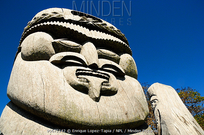 Wooden sculpture of face, Ile des Pins (Pine Island), New Caledonia, September 2008  -  Enrique Lopez Tapia/ npl