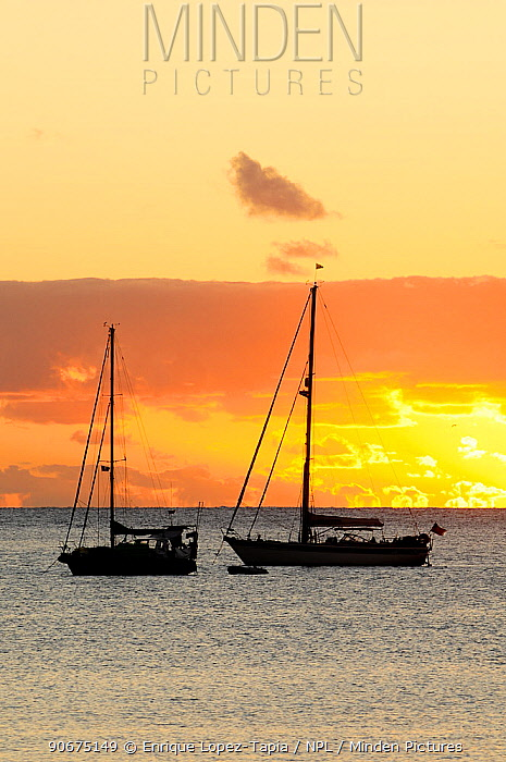 Sailing boats at sunset, on the coast Ile des Pins (Pine Island) New Caledonia  -  Enrique Lopez Tapia/ npl