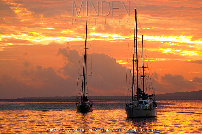 Sail boats at sunset Port Vila Bay, Efate Island, Vanuatu, September 2008  -  Enrique Lopez Tapia/ npl
