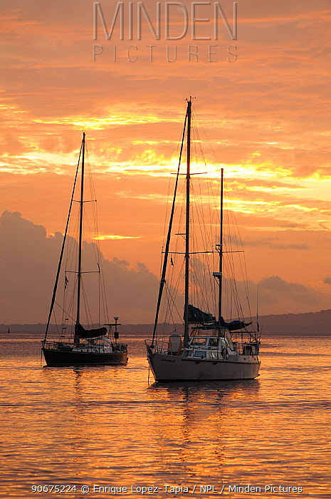 Sail boats at sunset Port Vila Bay, Efate Island, Vanuatu, September 2008  -  Enrique Lopez Tapia/ npl