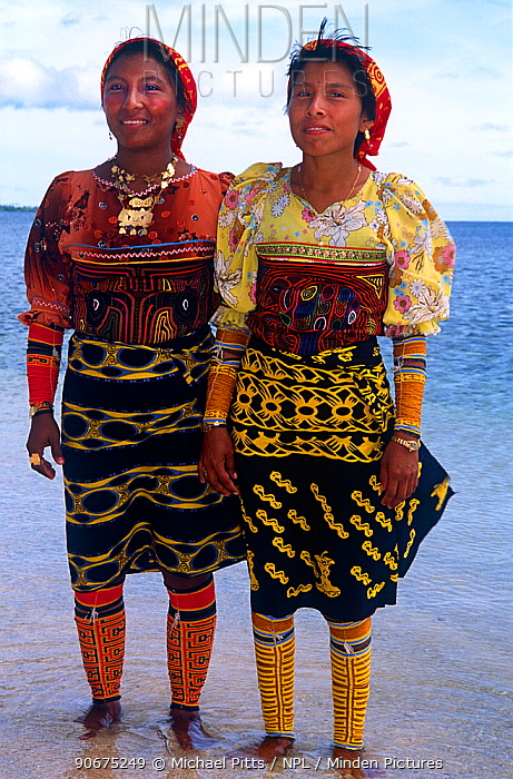 Guna, Kuna Indian women in traditional clothing wearing arm decorations and Mola Mola blouses and gold rings, San Blas Islands, Panama  -  Michael Pitts/ npl