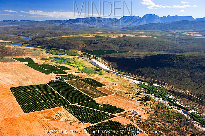 Aerial photograph of the Olifants River and the intensive agriculture along its course, a threat to the endemic fish species found here Citrusdal and Clanwilliam area, Western Cape, South Africa December 2013  -  Cheryl-Samantha Owen/ npl
