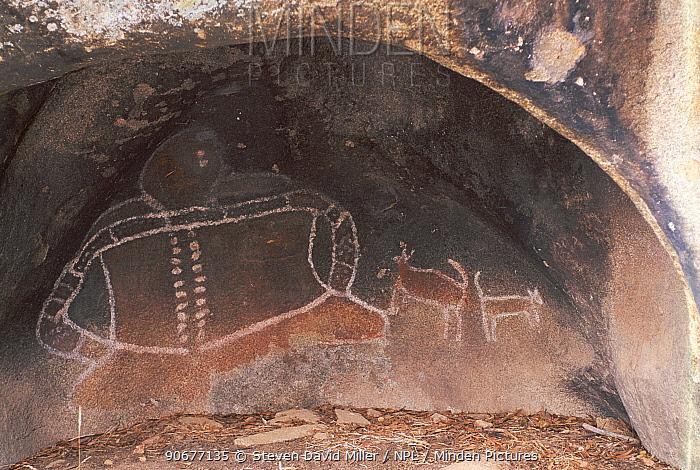 Aboriginal rock painting of ancestral spirit with dogs, Bunjils shelter, Grampians NP, Victoria, Australia  -  Steven David Miller/ npl