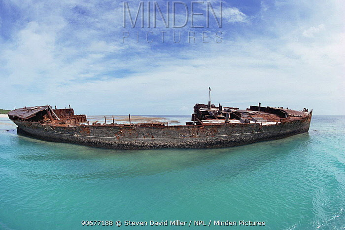 Wreck forms breakwater at harbour Heron Island, Great Barrier Reef, QLD, Australia  -  Steven David Miller/ npl