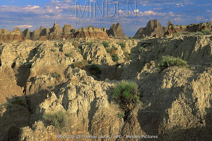 View over Cedar Pass, Badlands National Park, South Dakota, USA  -  Thomas Lazar/ npl