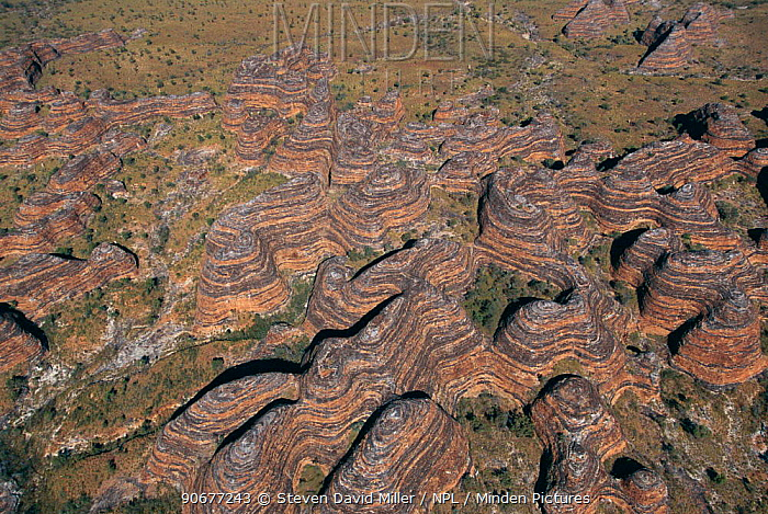 Aerial view of Bungle Bungle range, eroded sandstone domes, Purnululu NP W Australia, beehive structures with bands of clay, algae and iron  -  Steven David Miller/ npl