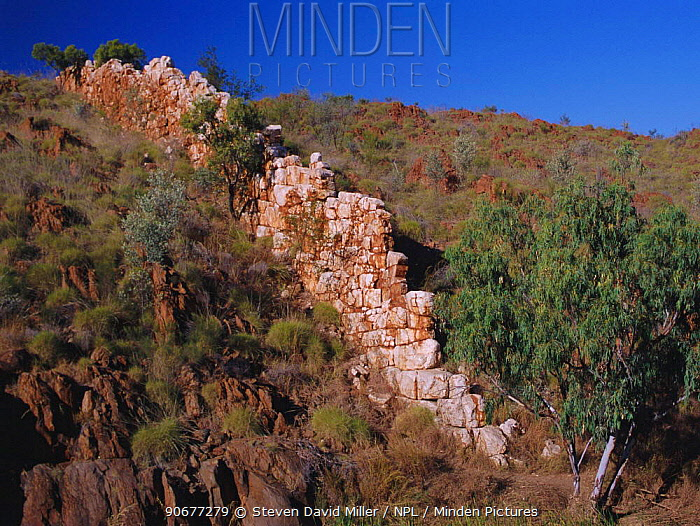 Quartz vein rising 6m above ground level, China walls, Halls creek, W Australia Kimberley  -  Steven David Miller/ npl