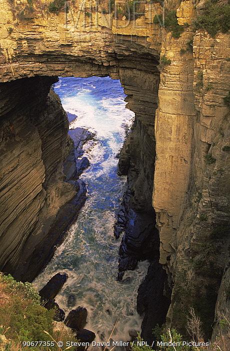 Tasmans Arch, Tasman Peninsular, near Port Arthur, Tasmania Australia  -  Steven David Miller/ npl