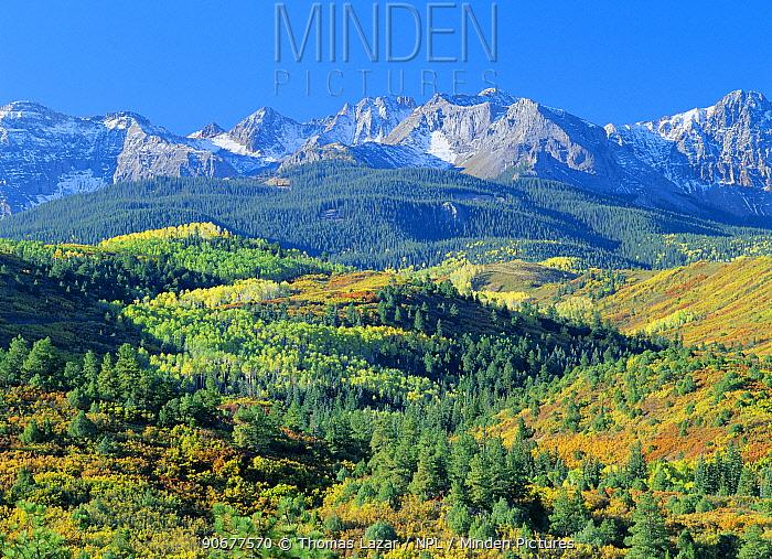 San Juan mountain and foothills, Dallas Divide mtn range, Rockies, Colorado, USA  -  Thomas Lazar/ npl