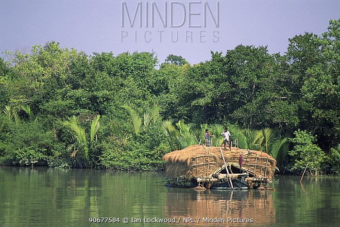 Boat with dried grass by mangrove forest, Sundarbans WHS, Sundarbans, Bangladesh  -  Ian Lockwood/ npl