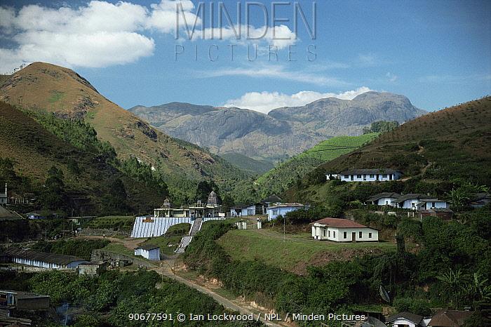 Munnar town overshadowed by Anaj-Mudi, S India's highest mountain, Western Ghats, Kerala  -  Ian Lockwood/ npl