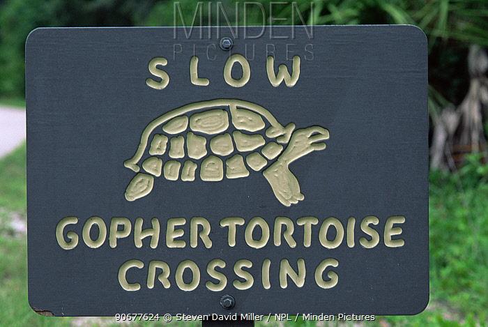 Road crossing sign for Florida gopher tortoise (Gopherus polyphemus) Florida, USA, endangered species  -  Steven David Miller/ npl