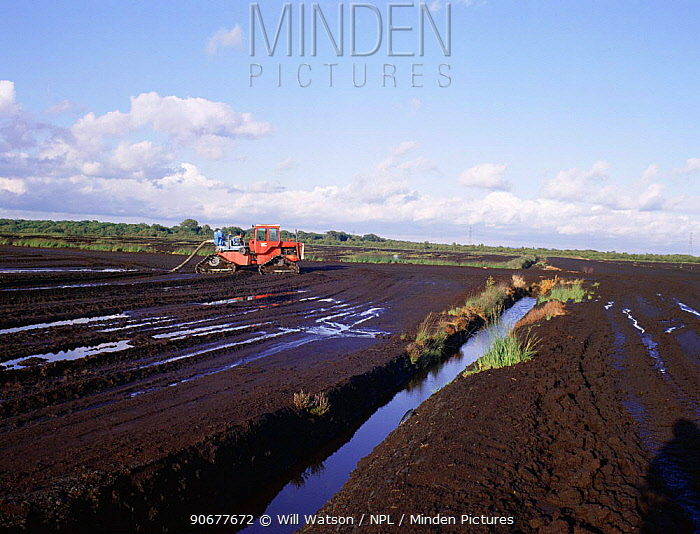 Stripping peat from Chat Moss, Greater Manchester, UK  -  Will Watson/ npl
