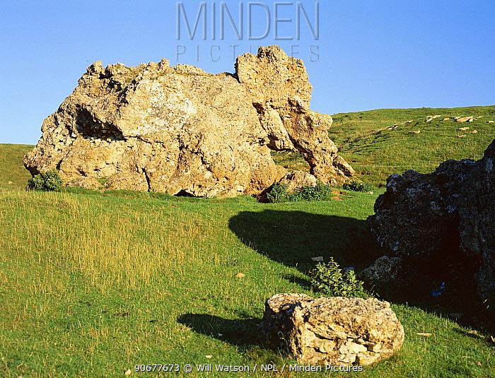 The Banbury Stone, Elephant stone composed of oolite, Bredon Hill, Worcestershire, England  -  Will Watson/ npl
