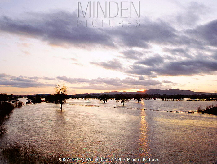 Sunset over River Severn in flood, Worcestershire, UK  -  Will Watson/ npl