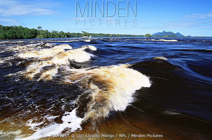 Rapids in Rio Negro, nr Sao Gabriel da Cachoeira, Amazonas, Brazil  -  Luiz Claudio Marigo/ npl