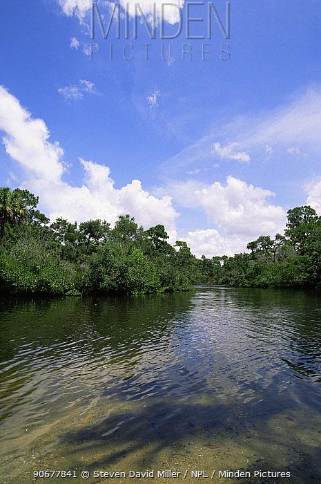 Koreshan State Historic Site, Estero river, Florida, USA  -  Steven David Miller/ npl