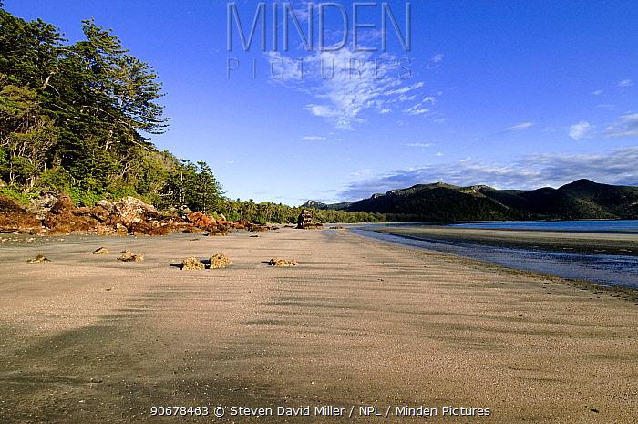Volcanic beach, Cape Hillsborough National Park, Queensland, Australia  -  Steven David Miller/ npl
