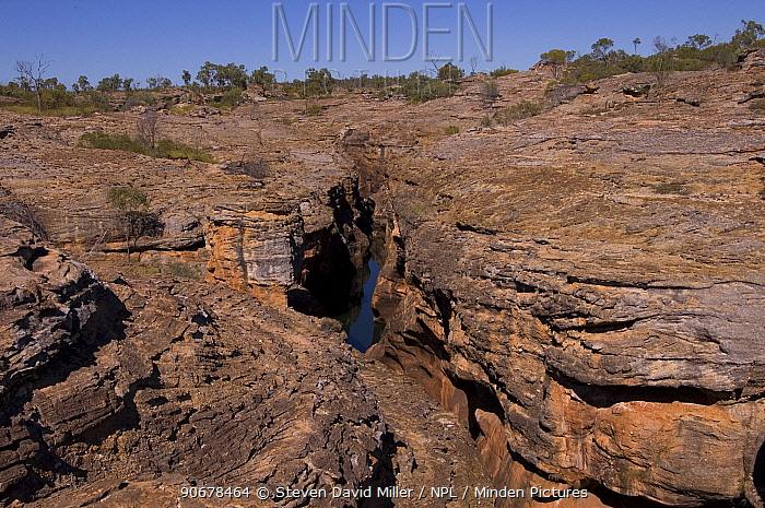 Cobbold Gorge, Robin Hood Station, Queensland, Australia  -  Steven David Miller/ npl