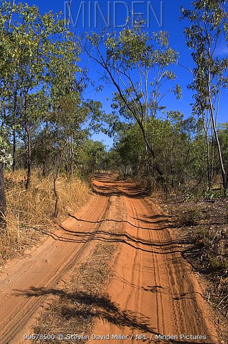 Sandy track road, Kakadu National Park, Northern Territory, Australia  -  Steven David Miller/ npl