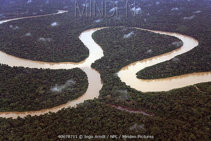 Aerial view of meander and tributary, Rio Yavari, Amazonia, Peru  -  Ingo Arndt/ npl