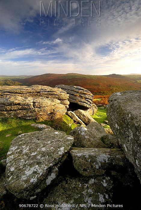 Granite rock outcrops, Combestone Tor, Dartmoor National Park, Devon UK November 2006  -  Ross Hoddinott/ npl
