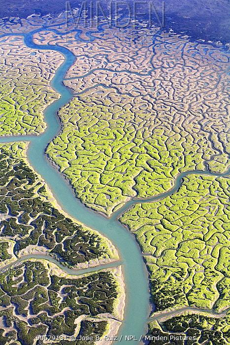 Aerial view of the Bay of Cadiz delta, Puerto de Santa Mar?a, C�diz, Spain  -  Jose B. Ruiz/ npl