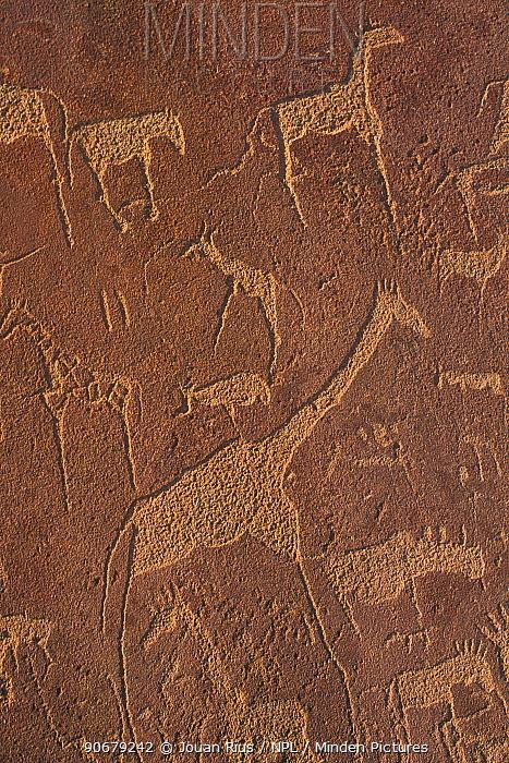 Bushman rock engravings of animals, Twyfelfontein, Damaraland, Namibia,  -  Jouan & Rius/ npl