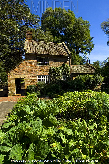 Cook's Cottage, where Captain Cook lived in England with his young family The cottage was shipped to Melbourne piece by piece, reassembled, and now stands in Fitzroy Gardens, Melbourne, Victoria, Australia  -  Steven David Miller/ npl