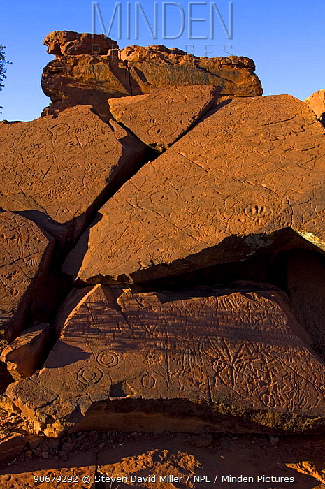Sandstone blocks with carvings, petroglyphs, Ewaninga Rock Carvings Conservation Reserve, Northern Territory, Australia  -  Steven David Miller/ npl