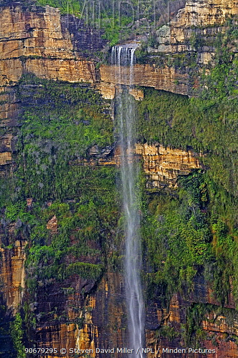 Waterfall viewed from Govetts Leap Lookout, Blue Mountains National Park (Blackheath), New South Wales, Australia Property Released  -  Steven David Miller/ npl