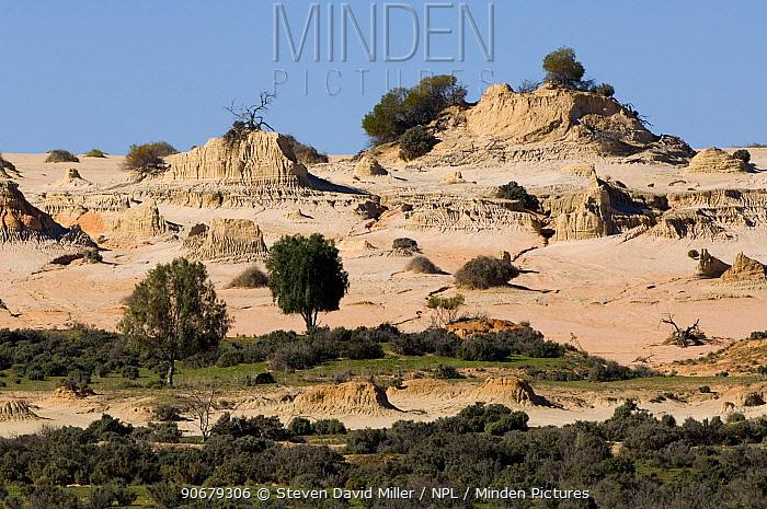 Mungo National Park, New South Wales, Australia  -  Steven David Miller/ npl
