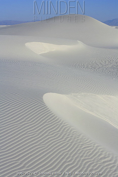 Sand ripples and ridges in white gypsum sand dune, White Sands National Monument, Chihuahuan Desert, New Mexico, USA  -  Thomas Lazar/ npl