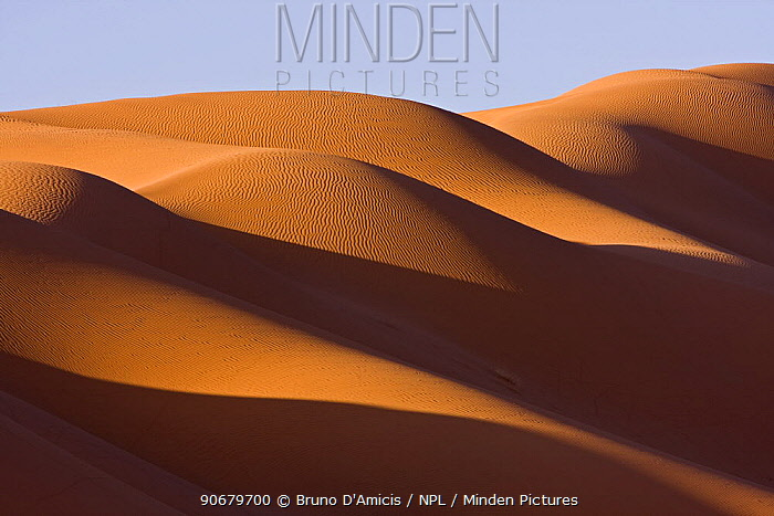Sand dunes in the Sahara desert at sunrise at the border of Morocco and Algeria, NW Africa  -  Bruno D'amicis/ npl
