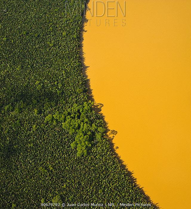 Aerial view of lowland rainforest and Kinabatangan River coloured with mineral deposits, Sabah, Malaysia 2007  -  Juan Carlos Munoz/ npl