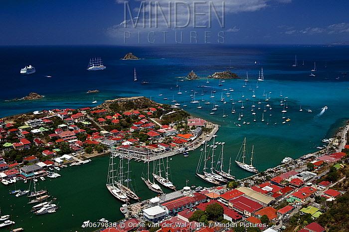 Island of Saint Barths, French West Indies 2009  -  Onne Van Der Wal/ npl