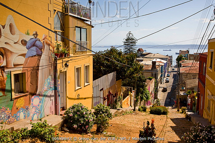 The streets of Valparaiso, Chile 2008  -  Onne Van Der Wal/ npl