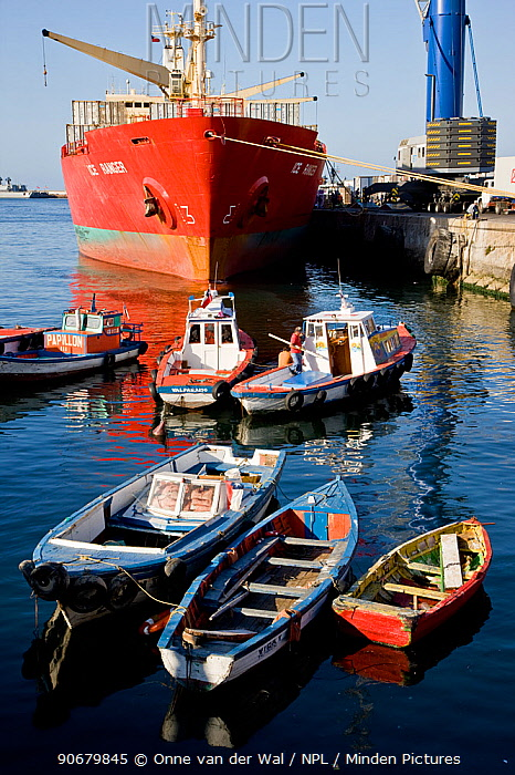 Small open boats with busy port behind Valparaiso, Chile 2008  -  Onne Van Der Wal/ npl