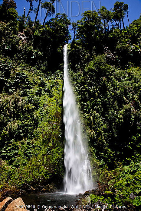 Waterfall, Lakes region, central Chile 2008  -  Onne Van Der Wal/ npl