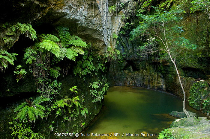 Stream and canyon in Isalo National Park, South Madagascar  -  Inaki Relanzon/ npl