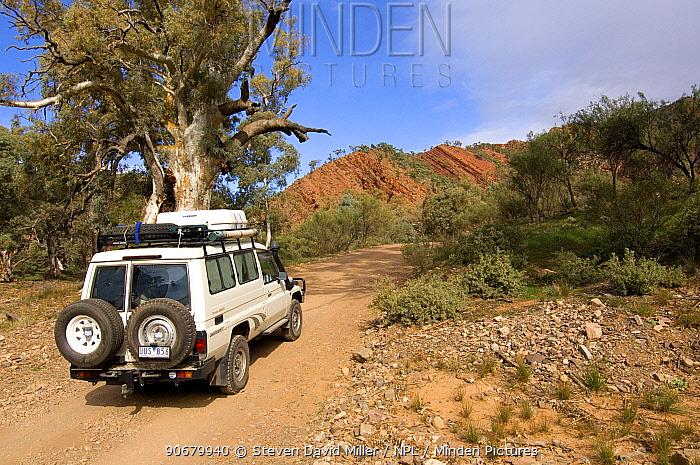 Jeep on Brachina Gorge Geological Trail, Flinders Ranges National Park, South Australia, June 2007  -  Steven David Miller/ npl