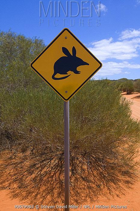 Sign warning travellers of Bilbies (Macrotis sp) on Peron Road, Francois Peron National Park, Western Australia, November  -  Steven David Miller/ npl